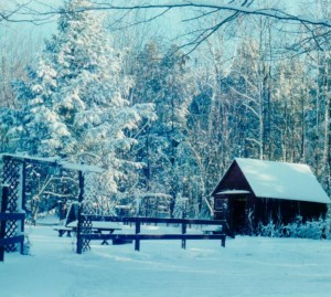 cropped-red-shed-and-yard-in-winter.jpg