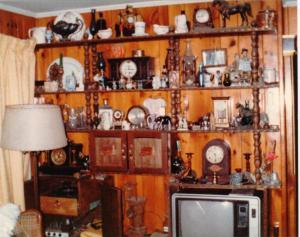 shelves new