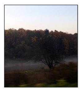 mist framed
