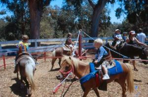 pony-rides-for-kids-southern-fair