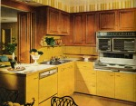 renovationkitchen-3-1966-xlg-95999344